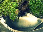 moss-spoon